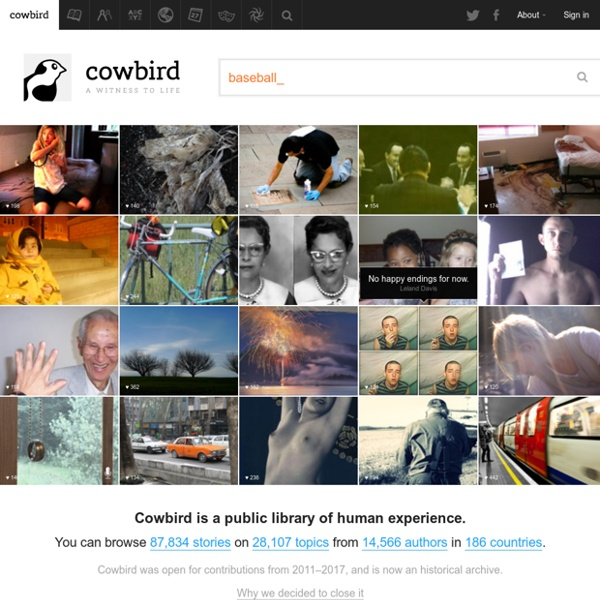 Cowbird · A witness to life