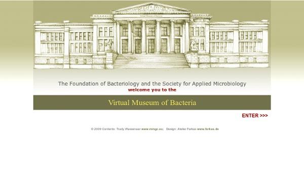 Virtual Museum of Bacteria