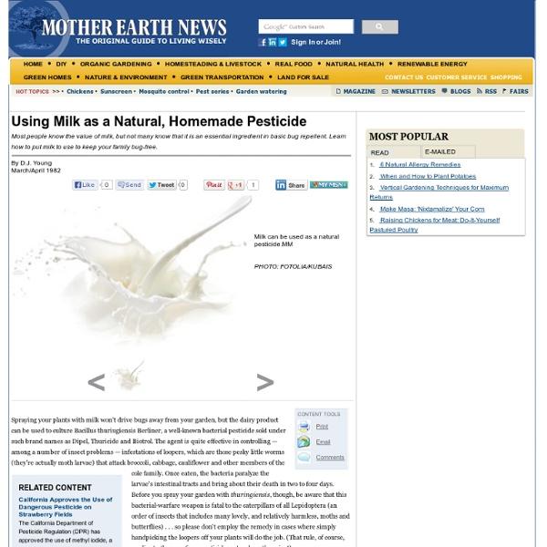 Using Milk as a Natural, Homemade Pesticide - Organic Gardening