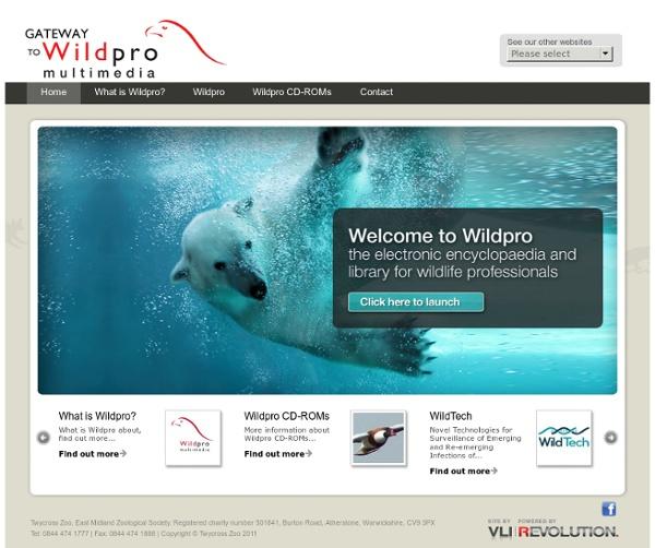 Wildlife Information Network