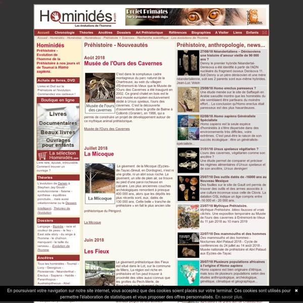 Hominidés - Préhistoire - Homme en évolution