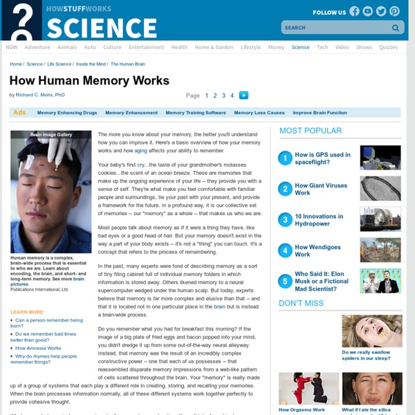 How Human Memory Works""