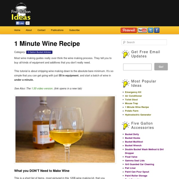 How to Make Wine in 1 Minute
