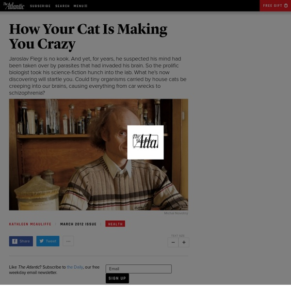 How Your Cat Is Making You Crazy - Kathleen McAuliffe