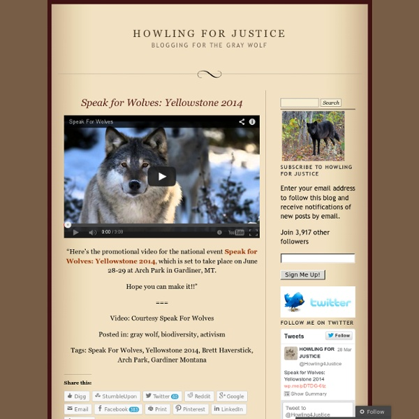 Blogging for the Gray Wolf
