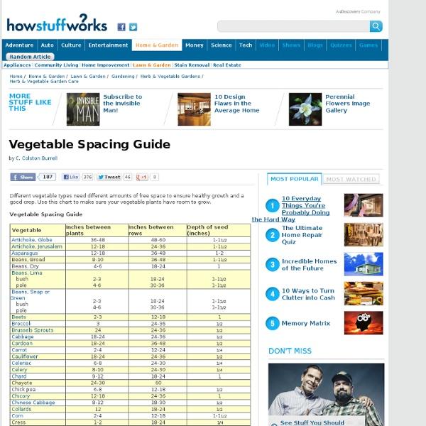 Vegetable spacing guide pearltrees - Spacing planting vegetables guide ...