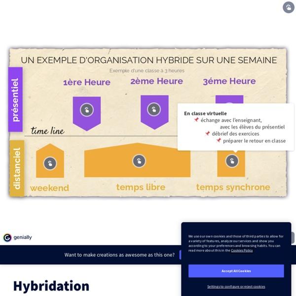 Proposition d'organisation pédagogique en hybridation par Nicolas Rency