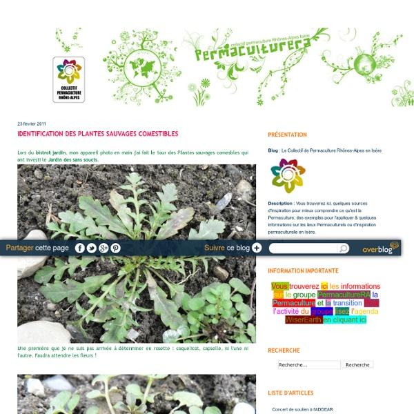 Identification des plantes sauvages comestibles - Le Collectif de Permaculture Rhônes-Alpes en Isère