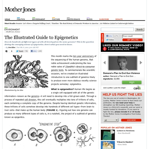 The Illustrated Guide to Epigenetics