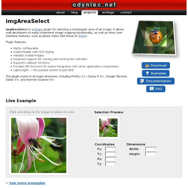 ImgAreaSelect - image selection/cropping jQuery plugin - odyniec.net