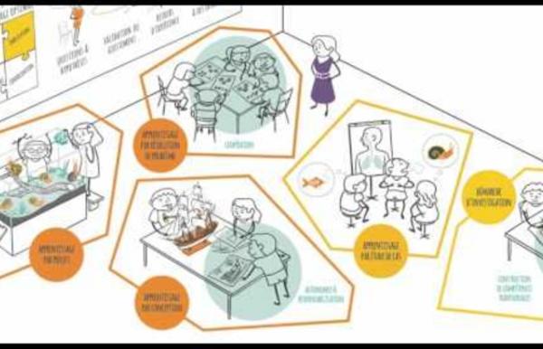 Impliquer les élèves pour donner du sens aux apprentissages
