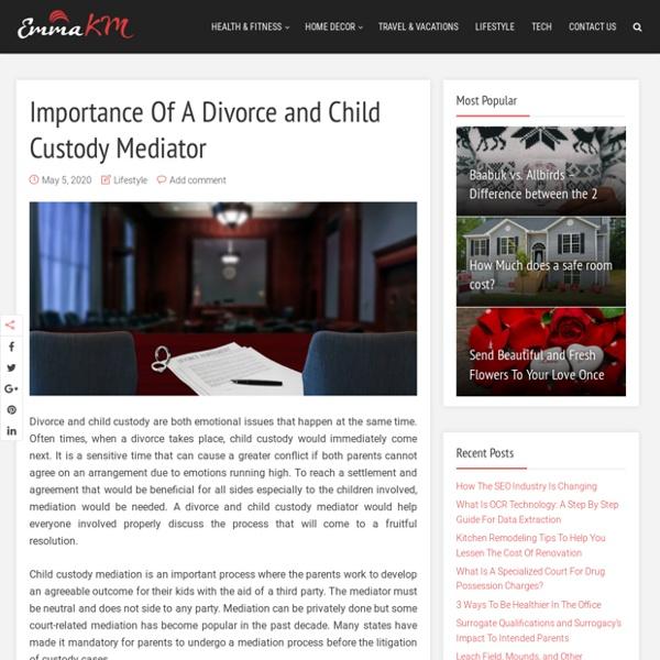 Importance Of A Divorce and Child Custody Mediator – Emma KM