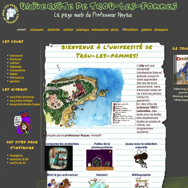Site du professeur Noyau - Université de Trou-les-pommes
