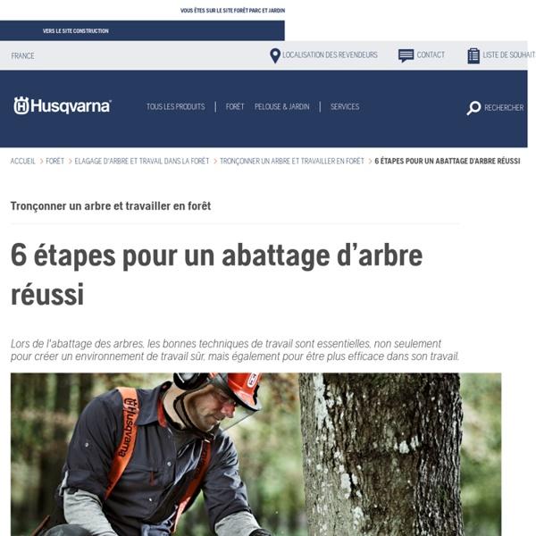 Abattre un arbre - 6 étapes indispensables - Husqvarna