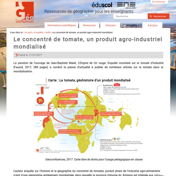 Le concentré de tomate, un produit agro-industriel mondialisé
