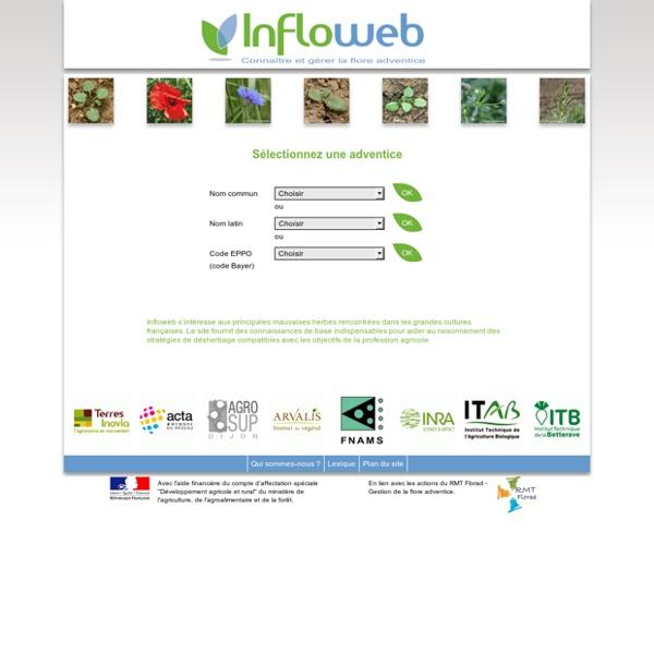 Infloweb - Connaître et gérer la flore adventice