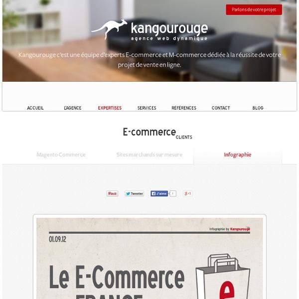 Infographie sur le E-Commerce en France en 2012