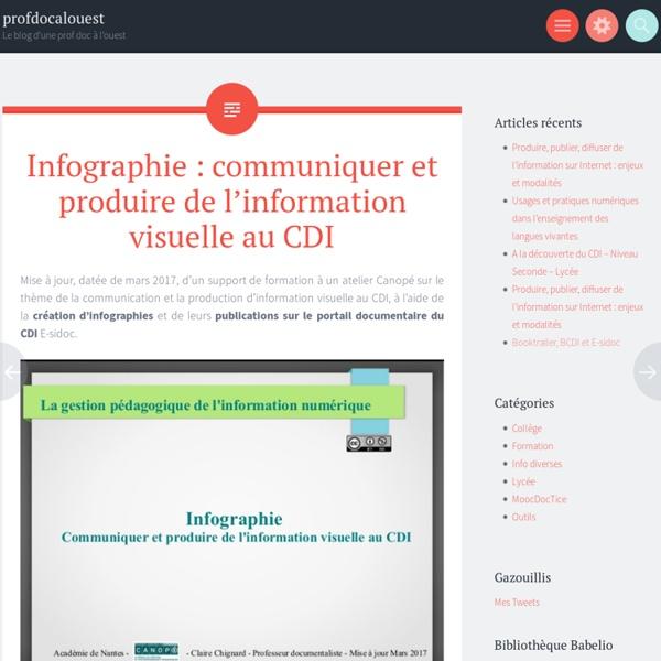 Infographie : communiquer et produire de l'information visuelle au CDI