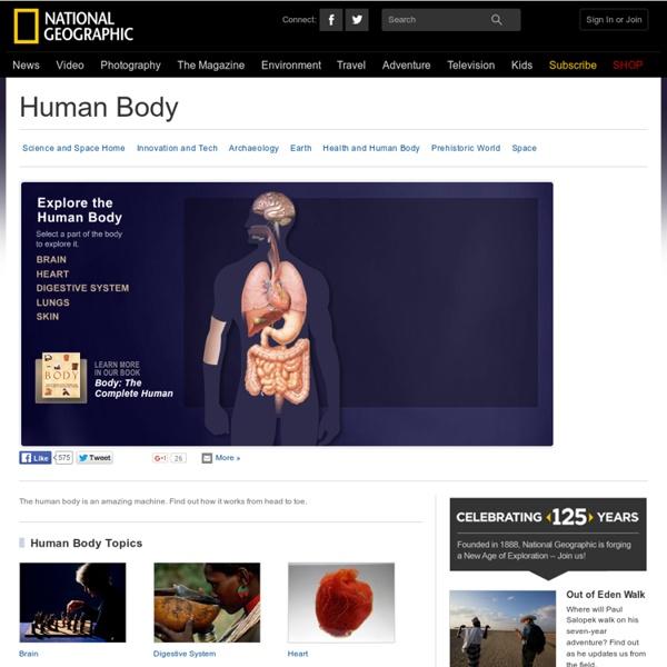 Human Body, Human Body Information