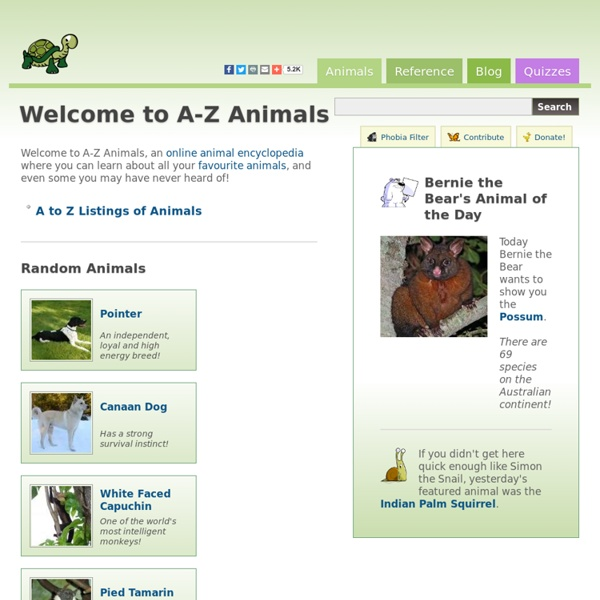A-Z Animals - Animal Facts, Information, Pictures, Videos, Resources and Links
