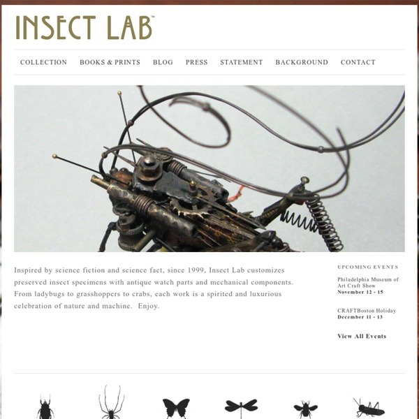 Mike Libby - Insect Lab - Beetles