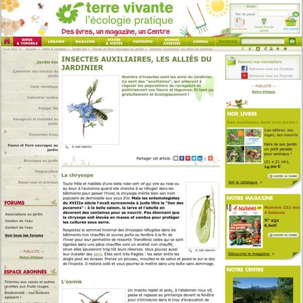 Insectes auxiliaires, les alliés du jardinier