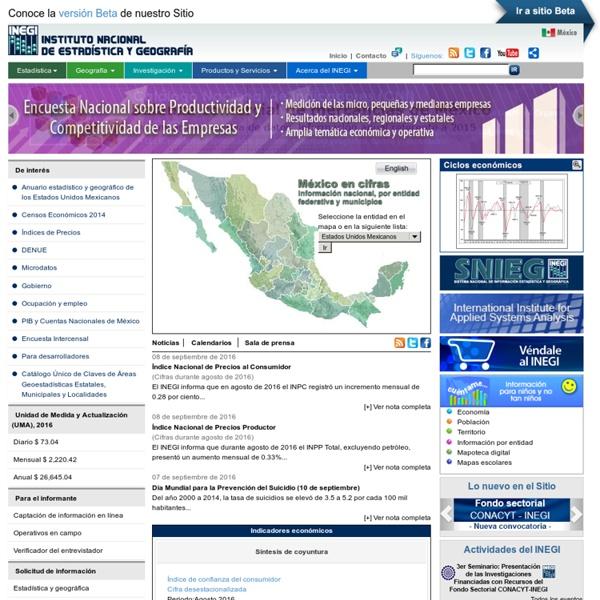 Instituto Nacional de Estadística y Geografía (INEGI)