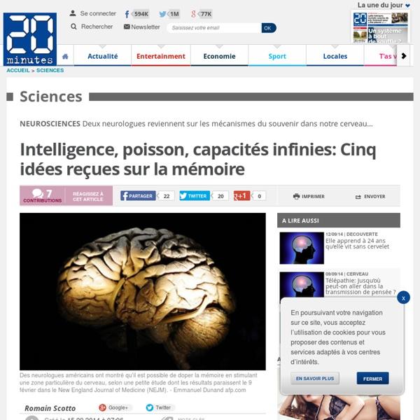 Intelligence, poisson, capacités infinies: Cinq idées reçues sur la mémoire