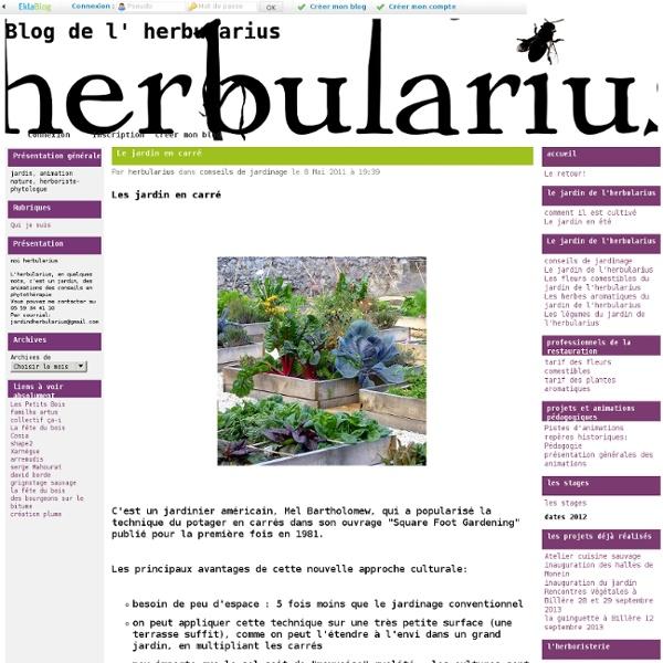 Le jardin en carré - Blog de l' herbularius