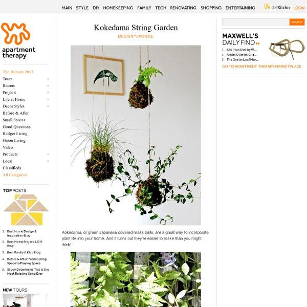 Kokedama String Garden Design*Sponge
