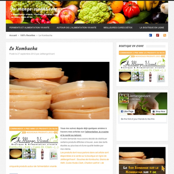 Kombucha : Le champignon de longue vie
