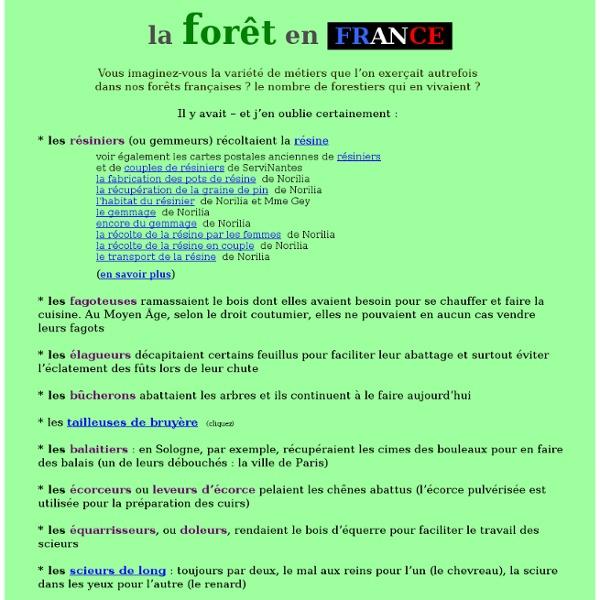 La forêt en France