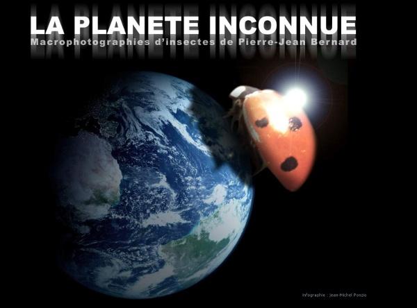 La Planète inconnue des Insectes