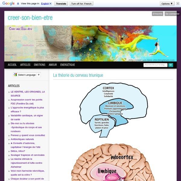 La théorie du cerveau triunique
