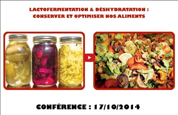 Lactofermentation & déshydratation : Conserver et optimiser nos aliments (Fabien Moine)