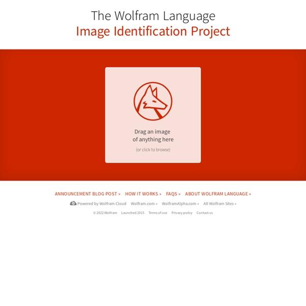 The Wolfram Language Image Identification Project