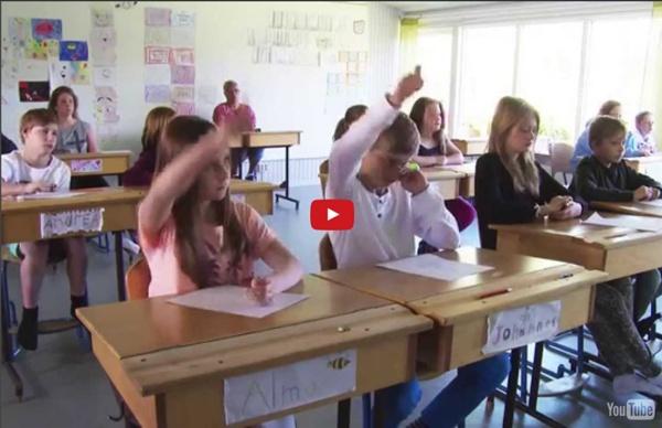 Bedömning för lärande - Synliggöra lärandet och kamratrespons