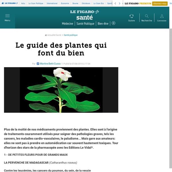 Le guide des plantes qui font du bien