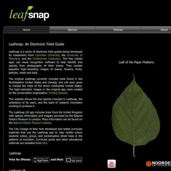 Leafsnap: An Electronic Field Guide