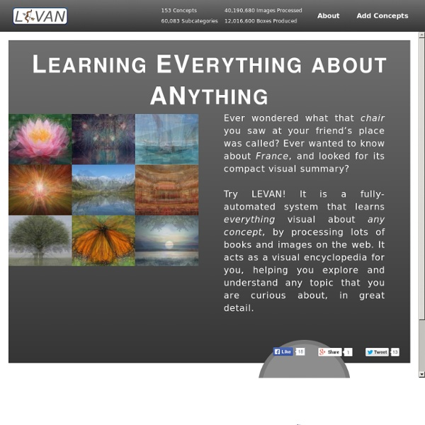 LEVAN: Learning Everything about Anything