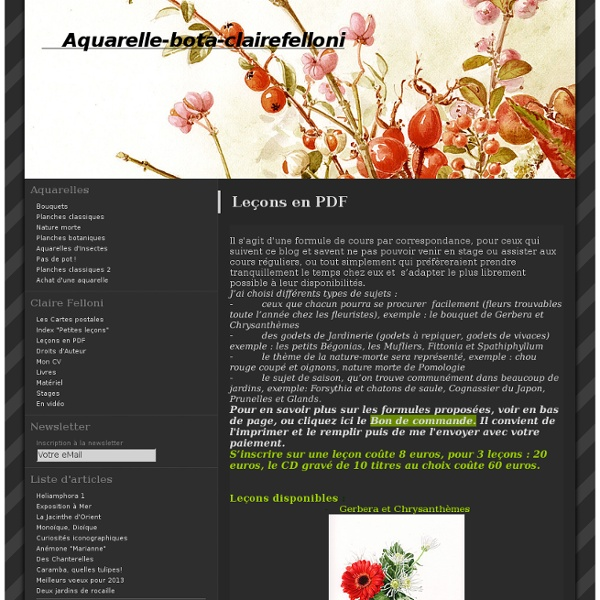 Leçons en PDF - aquarelle-bota-clairefelloni