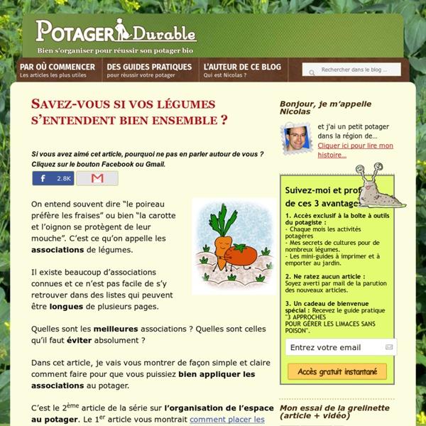 Vos légumes du potager suivent-ils les bonnes associations ?