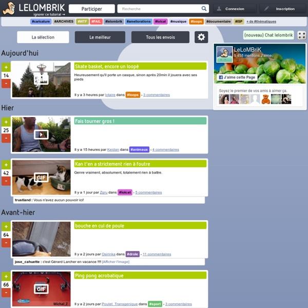 LeLoMBriK's connerie - Video, Image, Jeu, Humour, Insolite