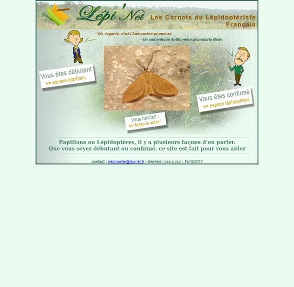 Lepinet.fr - Les carnets du lépidoptériste français - Des papillons aux lépidoptères