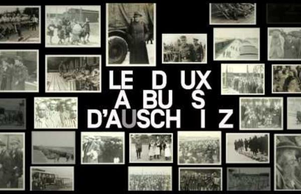 Les 2 albums d'Auschwitz