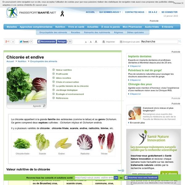Les endives, sources d'inuline
