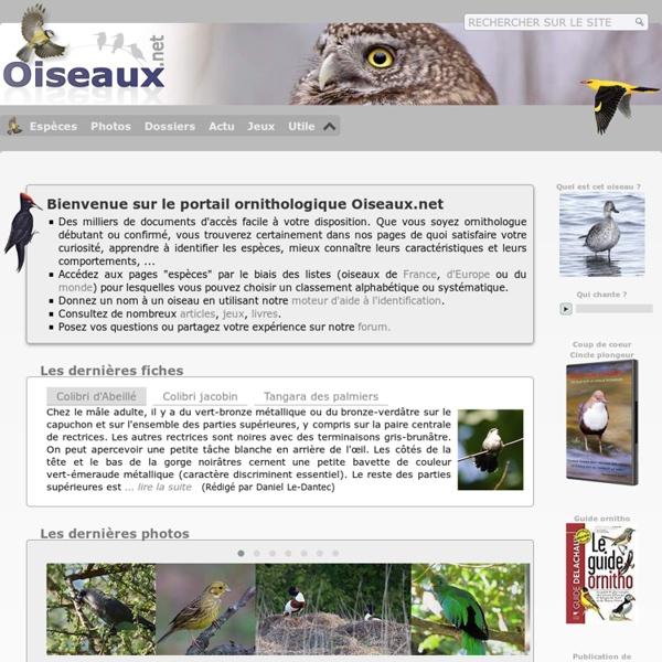 Encyclopédie sur les oiseaux