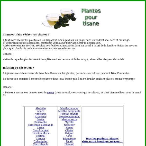 Les plantes pour tisane - tisane.gireaud.org