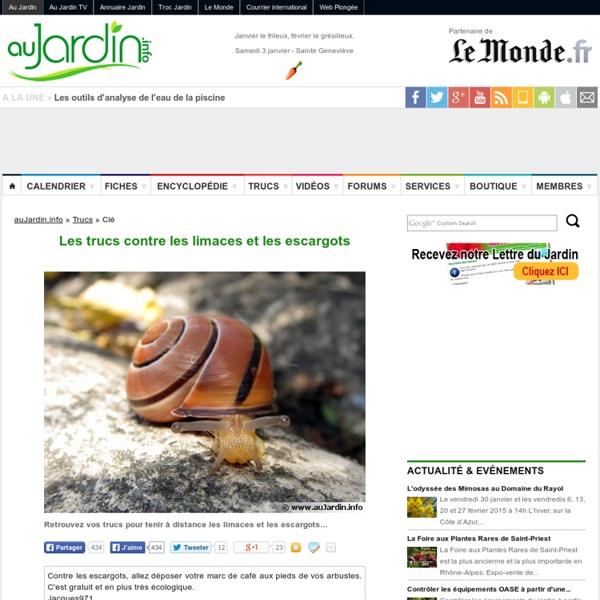Les trucs contre les limaces et les escargots