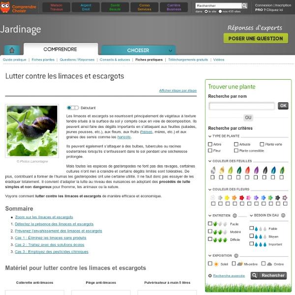 Lutter contre les limaces et escargots - Jardinage